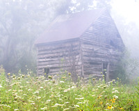 Barn in Summer Morning Mist